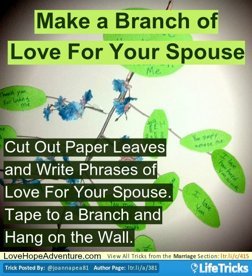 branch of love