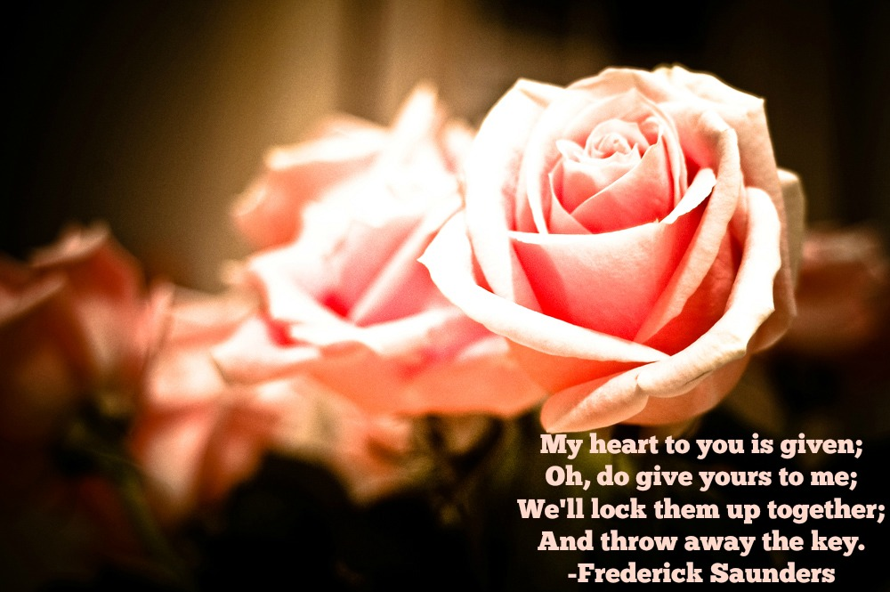 my heart to you is given