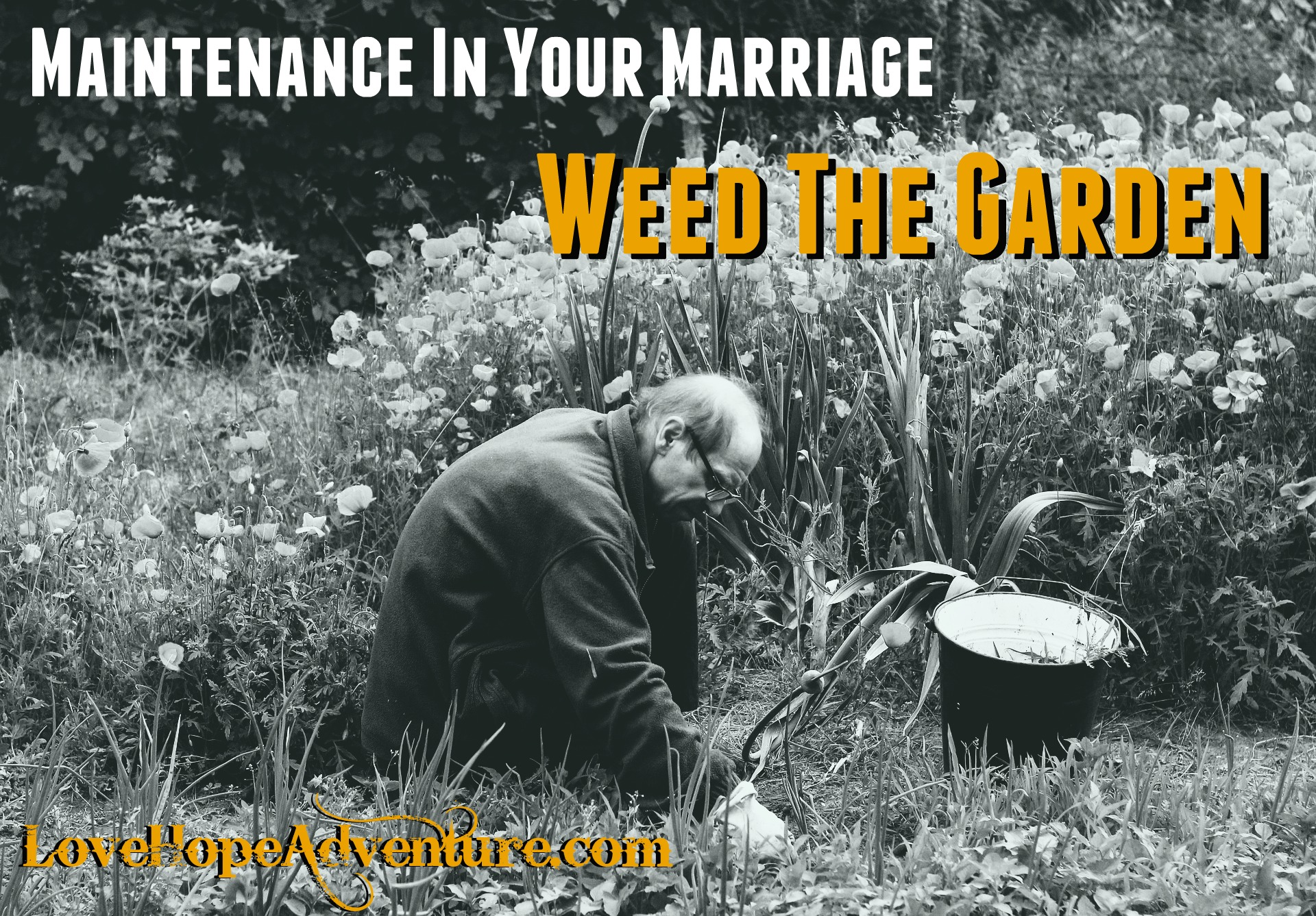 Maintenance In Your Marriage - Weed the Garden