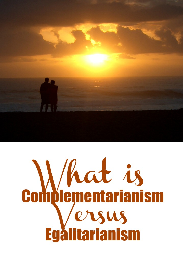 what does egalitarian relationship mean and median
