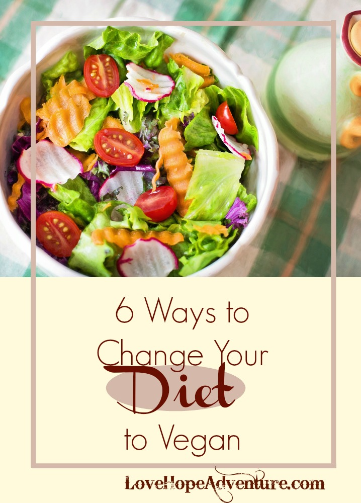 I've talked a lot about the diet changes I made a few months ago. It keeps coming up, because it has been such a HUGE transition for me and my family. Actually, it has caused a lot of frustrations and tension for a while. I think we are starting to get away from some of that.  I invited Kristin on to share about how to make the transition to vegan. She is the owner a food blog where she shares her hobby and experience for everybody. While I'm not vegan, I do make a lot of vegan recipes and order vegan foods at restaurants. This is the only way I can be sure that I'm not going to get dairy. Believe it or not, many people don't seem to understand that butter is a dairy product.